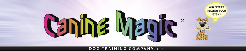 Canine Magic - A Massachusetts Dog Obedience Training Company